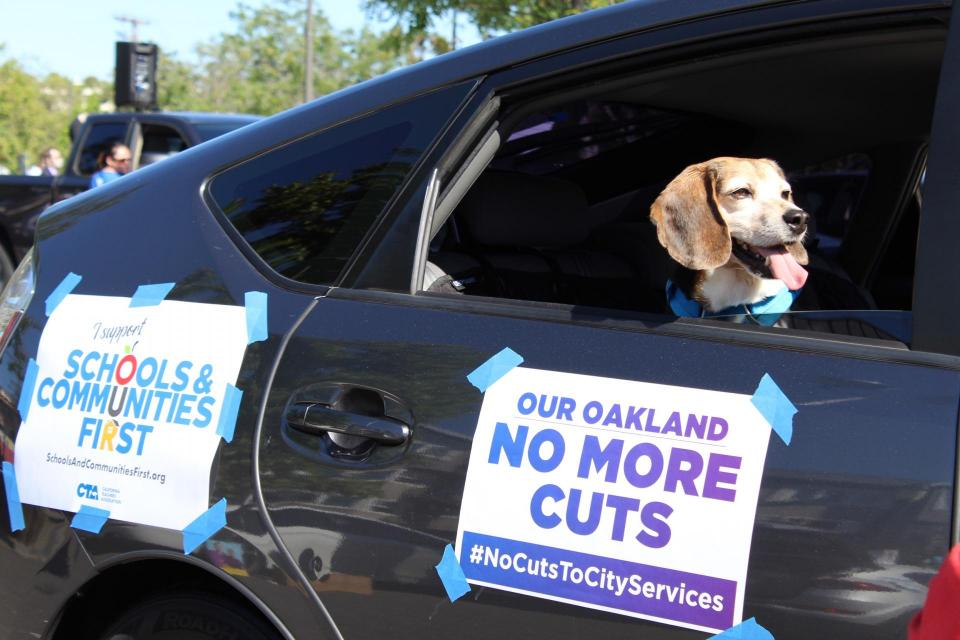 Dog in a car near signs reading NO MORE CUTS and SCHOOLS AND COMMUNITIES FIRST